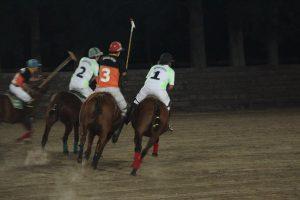 horses night vision