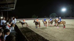 polo under the stars
