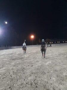 Play arena polo polo night polo under the stars